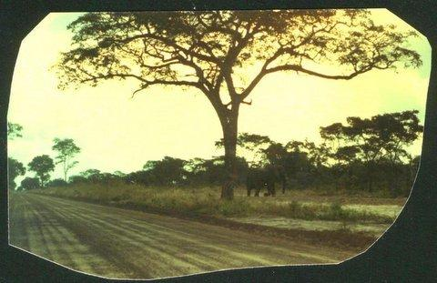 rhodesia road to kazangula